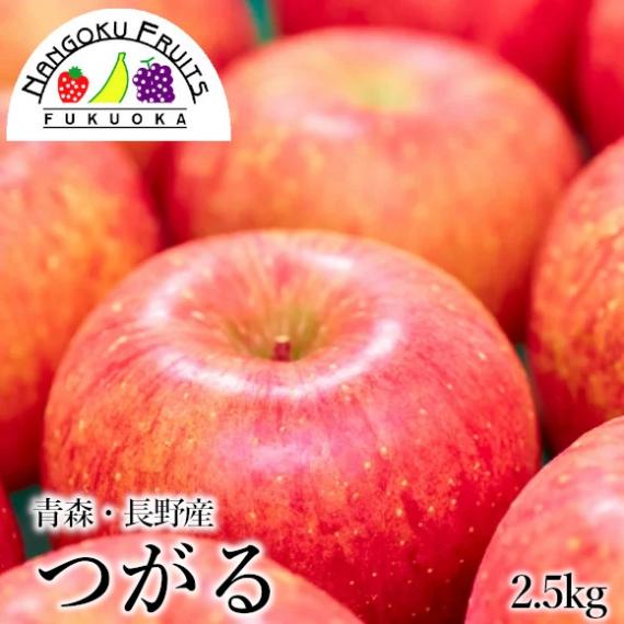 【送料無料】 つがる リンゴ 2.5kg  【贈答人気】【季節お薦め】【秋】【敬老の日】【フルーツ】【りんご】