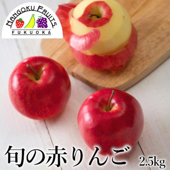 【送料無料】 旬の赤林檎 2.5kg(8-10玉)  【贈答人気】【季節お薦め】【秋】【りんご】【お歳暮2020】【フルーツ】
