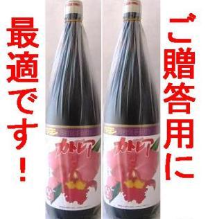 【送料無料!!】お歳暮カトレア醤油セット