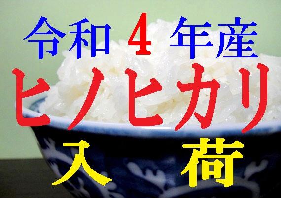【送料無料】【令和1年産】 大分県産ヒノヒカリ 10kg