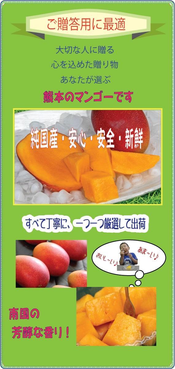 くまもと完熟マンゴー   2L玉×5個(計2kg程度)【お中元2020】【フルーツ】