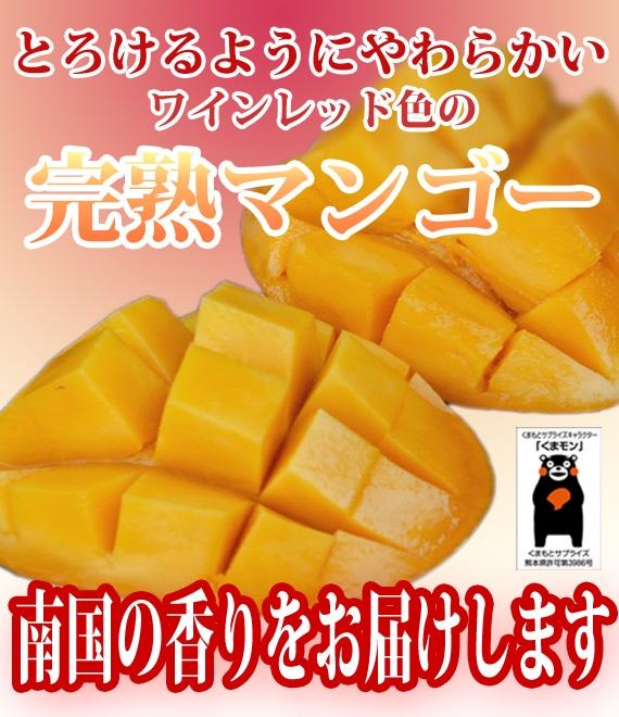 くまもと完熟マンゴー 2L玉×2個(計800g以上)【お中元2020】【フルーツ】【送料無料】※ただし北海道・沖縄については別途送料を頂戴します
